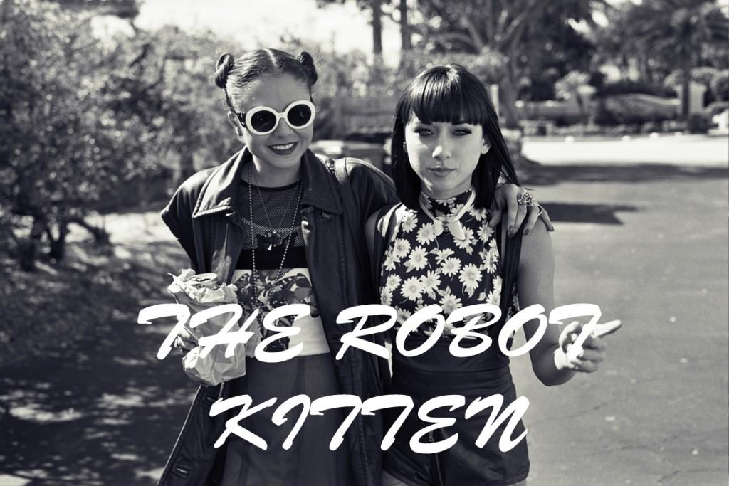 The Robot Kitten Experience