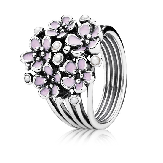 Pandora Jewellery from Gift & Wrap (8)