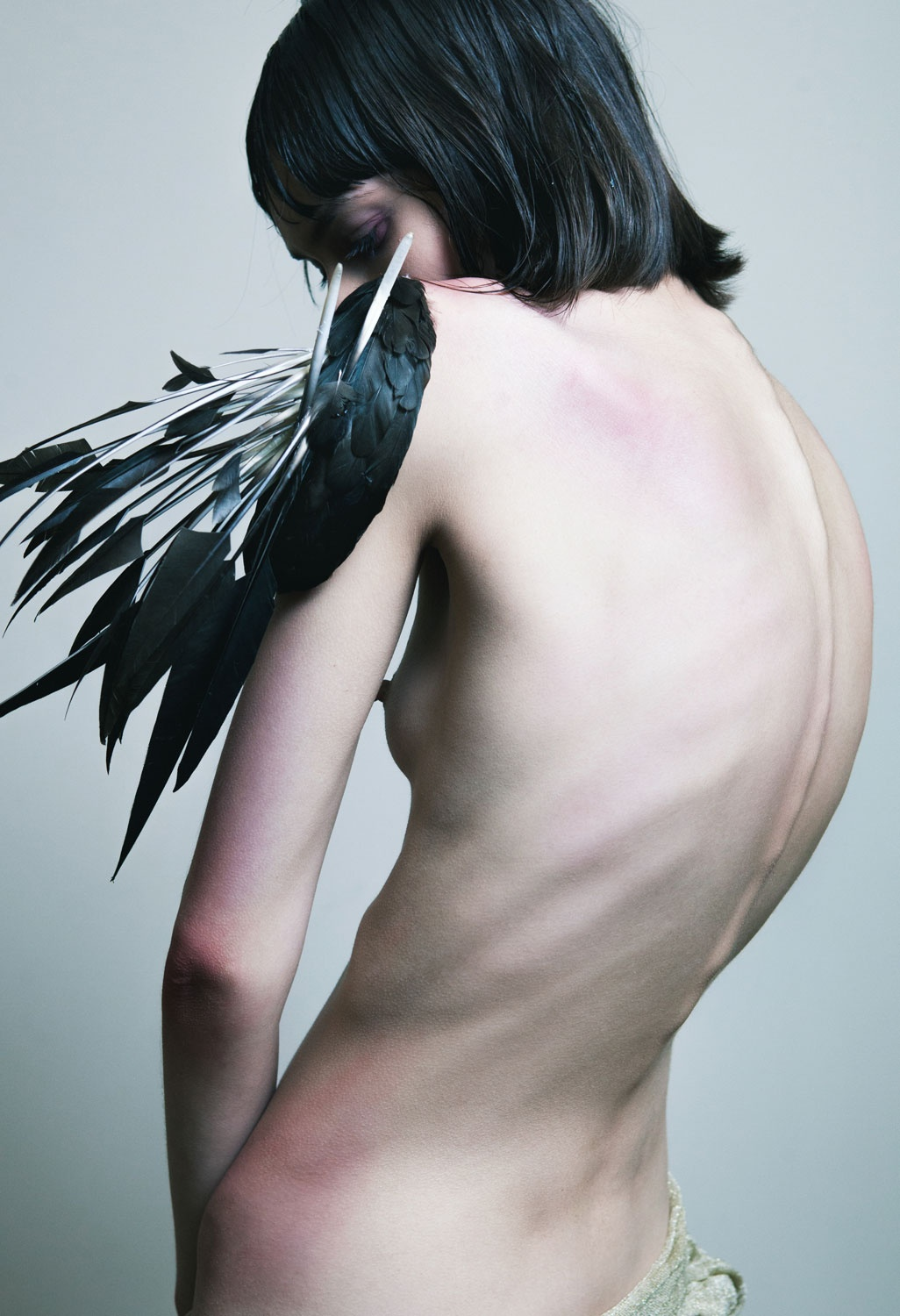Ruslan Baginskiy 2013 Birds Of Paradise Collection