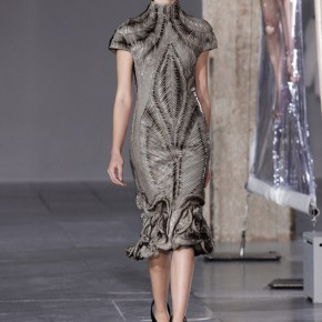 Iris Van Herpen 2014 Autumn Winter Collection (12)