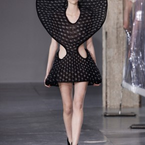 Iris Van Herpen 2014 Autumn Winter Collection (23)