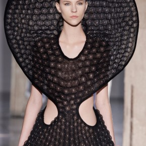 Iris Van Herpen 2014 Autumn Winter Collection (24)